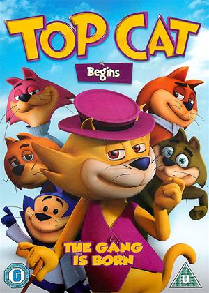 Rent Top Cat Begins (aka Don Gato: El Inicio de la Pandilla) Online DVD Rental
