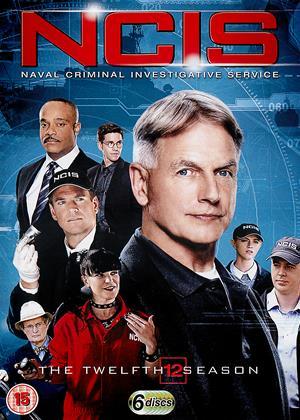Rent NCIS: Series 12 Online DVD Rental