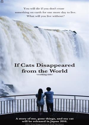 Rent If Cats Disappeared from the World (aka Sekai kara neko ga kietanara) Online DVD Rental