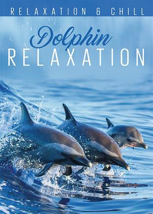 Rent Dolphin Relaxation Online DVD & Blu-ray Rental