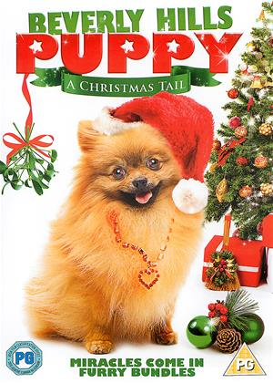 Rent Beverly Hills Puppy (aka Beverly Hills Christmas / Beverly Hills Pooch) Online DVD Rental