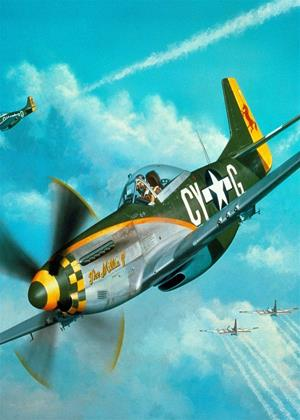 Rent Warplanes of World War II: The Legendary Combat Aircraft Online DVD Rental