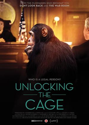 Rent Unlocking the Cage Online DVD Rental