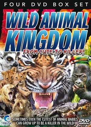 Rent Wild Animal Kingdom (aka Wild Animal Kingdom: From Cute to Killer) Online DVD Rental