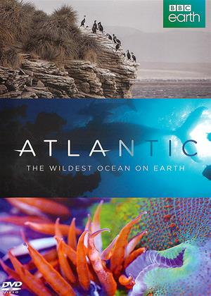 Rent Atlantic: The Wildest Ocean on Earth Online DVD Rental