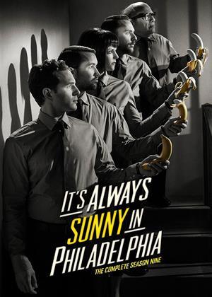 Rent It's Always Sunny in Philadelphia: Series 9 Online DVD Rental