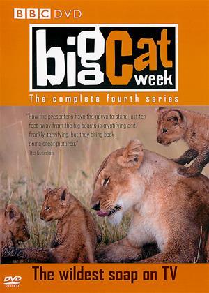 Rent Big Cat Week: Series 4 (aka Big Cat Diary: Series 4) Online DVD Rental