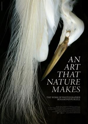 Rent An Art That Nature Makes (aka An Art That Nature Makes: The Work of Rosamond Purcell) Online DVD Rental