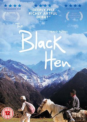 The Black Hen Aka Kalo Pothi 2015 Film Cinemaparadiso Co Uk