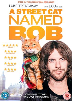 Rent A Street Cat Named Bob Online DVD & Blu-ray Rental
