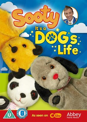 Rent Sooty: It's a Dog's Life Online DVD Rental