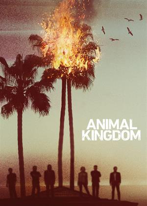 Rent Animal Kingdom: Series 2 Online DVD Rental