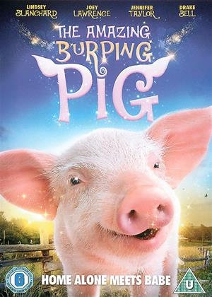 Rent The Amazing Burping Pig (aka Arlo: The Burping Pig / Toby the Burping Pig) Online DVD Rental