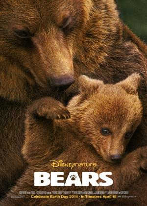 Rent Bears Online DVD Rental