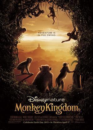 Rent Monkey Kingdom Online DVD & Blu-ray Rental