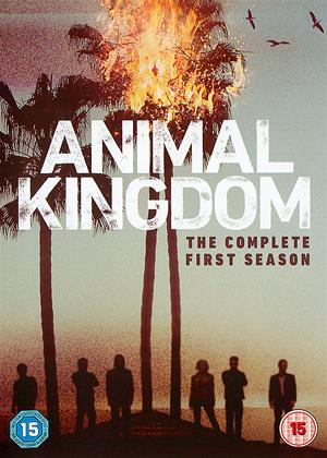 Rent Animal Kingdom: Series 1 Online DVD Rental