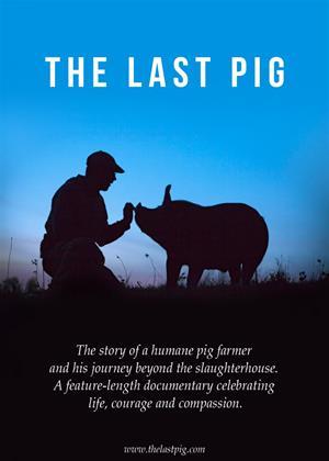 Rent The Last Pig Online DVD Rental