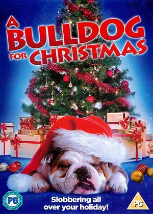 Rent A Bulldog for Christmas Online DVD Rental