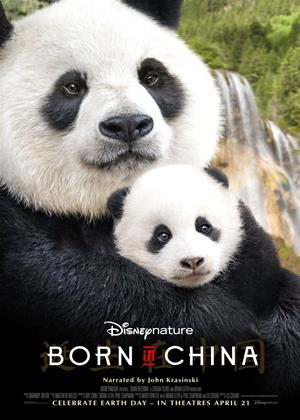 Rent Born in China Online DVD Rental