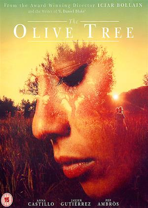 Rent The Olive Tree (aka El Olivo) Online DVD & Blu-ray Rental
