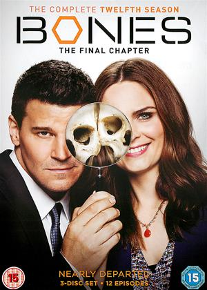 Rent Bones: Series 12 Online DVD Rental