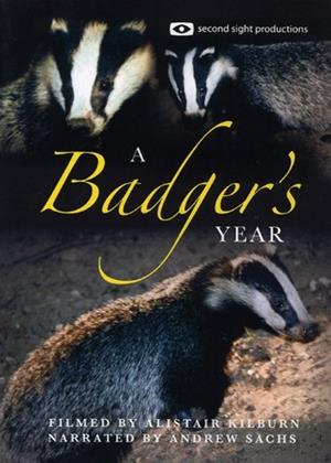 Rent A Badger's Year Online DVD Rental