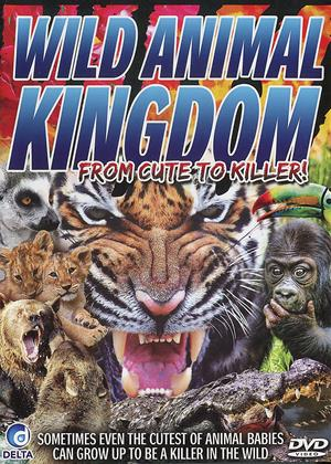 Rent Wild Animal Kingdom (aka Wild Animal Kingdom: From Cute to Killer) Online DVD Rental
