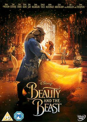 Rent Beauty and the Beast Online DVD Rental