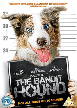 Rent The Bandit Hound Online DVD Rental