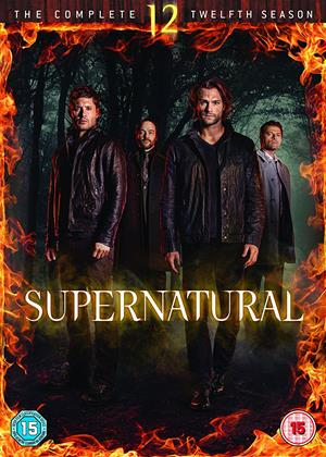 Rent Supernatural: Series 12 Online DVD Rental