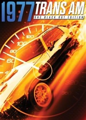 Rent 1977 Trans AM (DHC Black Out Edition) Online DVD Rental