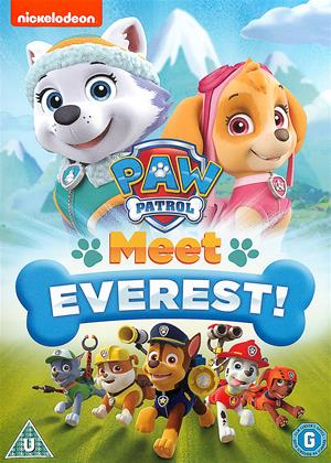 Rent Paw Patrol: Meet Everest! Online DVD & Blu-ray Rental
