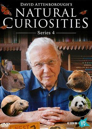 Rent Natural Curiosities: Series 4 (aka David Attenborough's Natural Curiosities: Series 4) Online DVD Rental