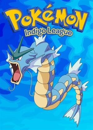 Rent Pokemon: Indigo League: Series 9 Online DVD Rental
