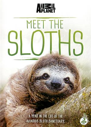 Rent Meet the Sloths Online DVD & Blu-ray Rental