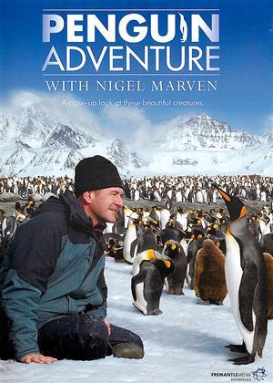 Rent Penguin Adventure with Nigel Marven Online DVD & Blu-ray Rental