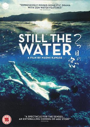Rent Still the Water (aka Futatsume no mado) Online DVD Rental