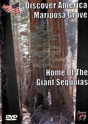 Rent Discover America: Mariposa Grove (aka Discover America: Mariposa Grove: Home of the Giant Sequoias) Online DVD & Blu-ray Rental