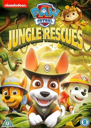 Rent Paw Patrol: Jungle Rescues Online DVD Rental