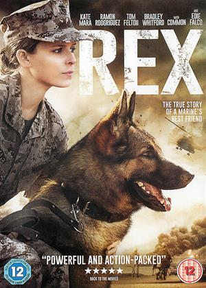 Rent Rex (aka Leavey / Megan Leavey) Online DVD & Blu-ray Rental