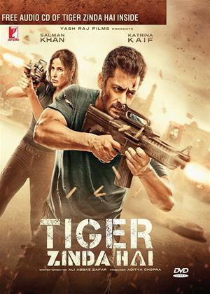 Rent Tiger Zinda Hai Online DVD Rental