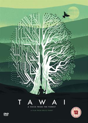 Rent Tawai: A Voice from the Forest Online DVD Rental