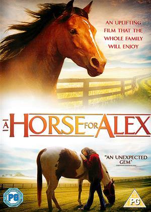 Rent A Horse for Alex (aka Camp Harlow) Online DVD Rental