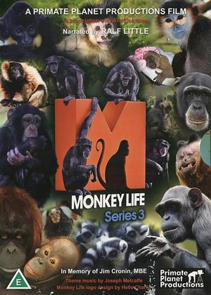 Rent Monkey Life: Series 3 Online DVD Rental
