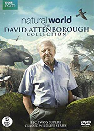 Rent Natural World: The David Attenborough Collection Online DVD Rental