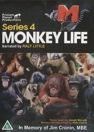Rent Monkey Life: Series 4 Online DVD & Blu-ray Rental