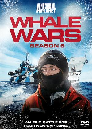 Rent Whale Wars: Series 6 Online DVD Rental