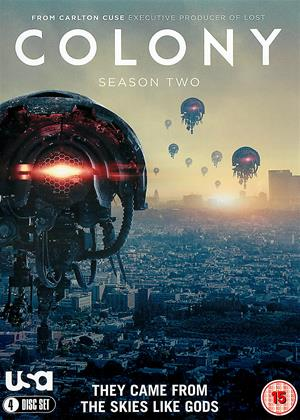Rent Colony: Series 2 Online DVD Rental