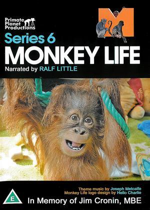 Rent Monkey Life: Series 6 Online DVD & Blu-ray Rental
