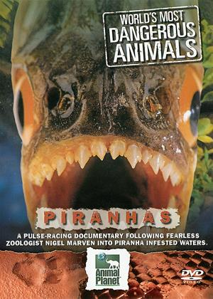 Rent World's Most Dangerous Animals: Piranhas Online DVD & Blu-ray Rental